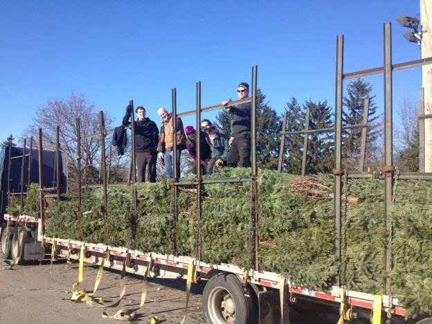 Royal Ottawa xmas tree sale