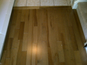 Ottawa Home Renovations Contractor Patricia Kanata Maple Hardwood Flooring Day 2 after