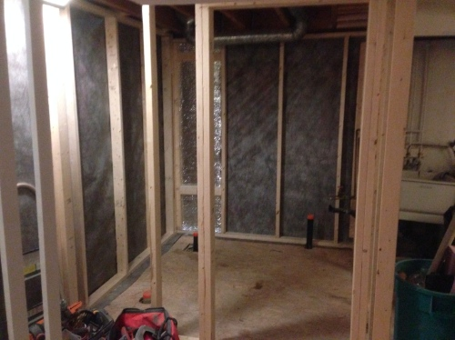 Day 5: Framing Is Complete For This Bathroom In The Basement.