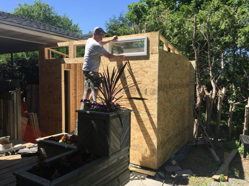 Contemporary shed going up.